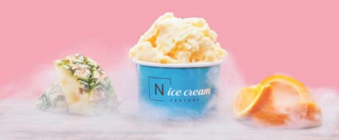 N'Ice Cream Factory